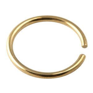 Gold Anodized 316L Surgical Steel Nose Ring