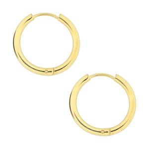 Golden Anodized Simple Hoop 316L Steel Earrings Ear Pair