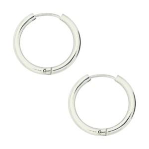 Metallized Simple Hoop 316L Steel Earrings Ear Pair