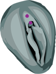 Clitoral Hood Female Intimate Genital Piercing